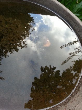 Sky in the Birdbath
